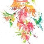 Колибри акварель